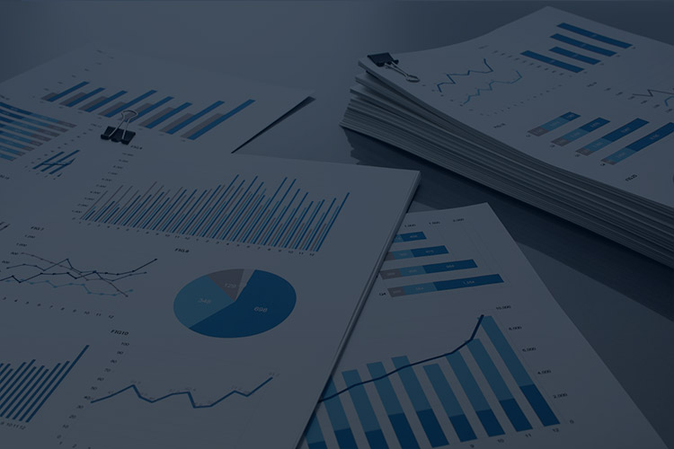 スライド画像:解析データイメージ